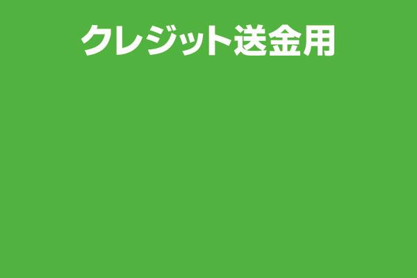 ZR20990101